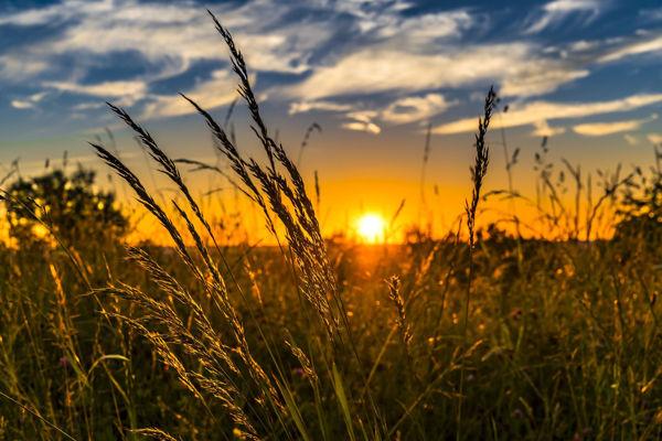 Obrázek Ekologické cestování: existuje vůbec? 23.9. 16:30-18:00